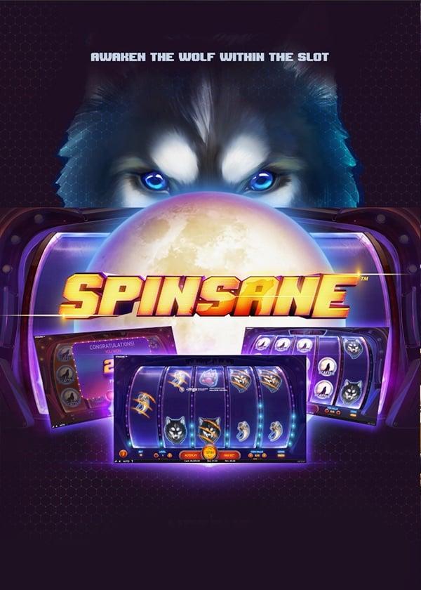 spinsane-poster